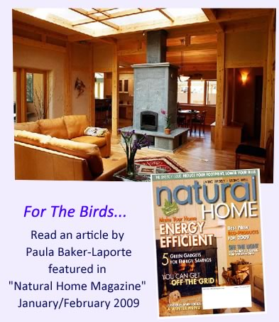 EcoNest interior | Birds of a Feather Community homes